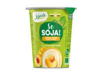 Bio Soja Spezialität Mango/Pfirsich